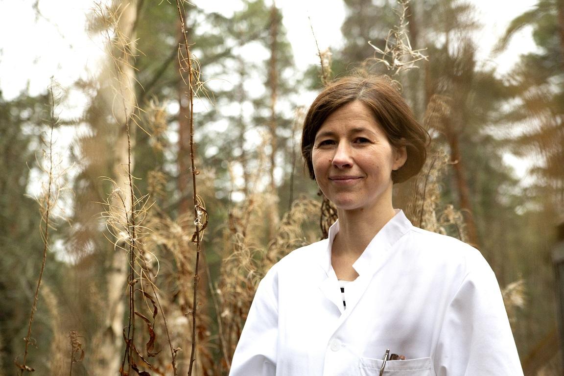 Kuva syöpätautien lääkäri Laura Aroviidasta